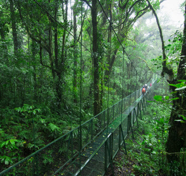 Monteverde Biological Reserve