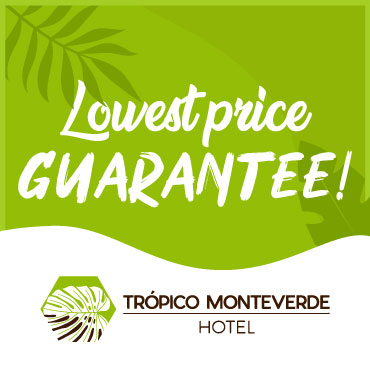 Hotels in Monteverde Costa Rica